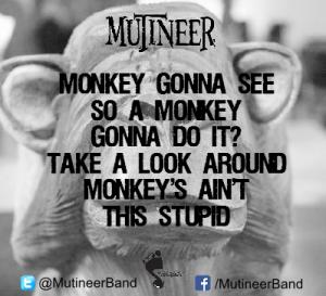 02-21-16 - Monkey gonna see